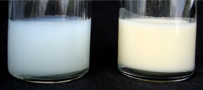 Как повысить жирность, как проверить и определить жирность грудного молока